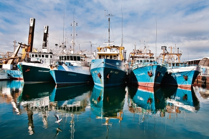 Marine parks to hit fishing industry