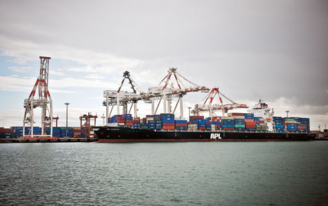 Nalder orders ports review