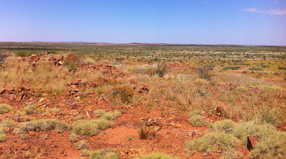 Rio to farm-in to WA gold project