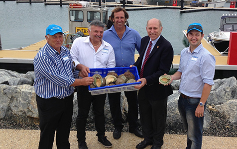 Approval achieved for Augusta abalone