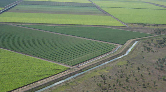 Farmers selected for Ord River land
