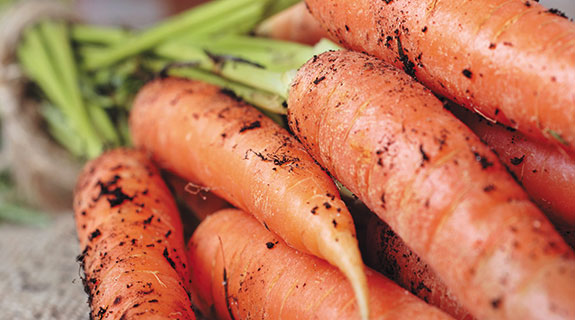 When crunch time comes, carrots are tops