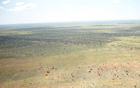 Rey sells off Kimberley project for $21m