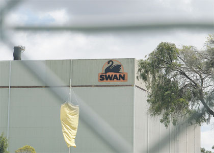Case of Swan being lost to distant markets