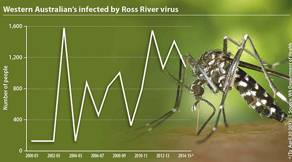 Mozzies welcome human invasion