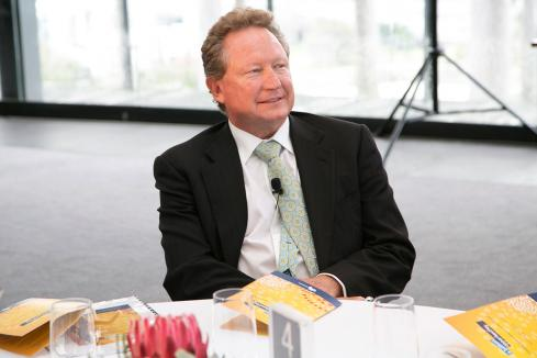 Forrest increases Fortescue stake