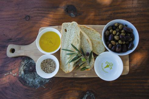 Olive oil ecotourism opportunity