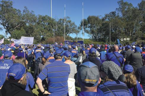 Western Force fight on after appeal loss