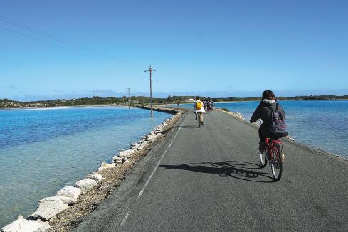 Young Chinese tourists offer signposts for Rotto