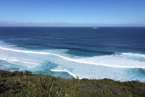$31m for Albany wave farm