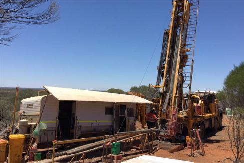St George finds new nickel conductors at Mt Alexander