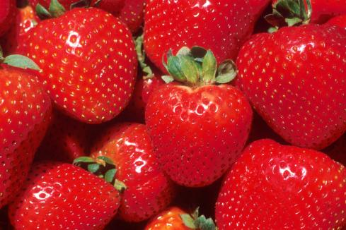 No strawberry tampering in WA: minister