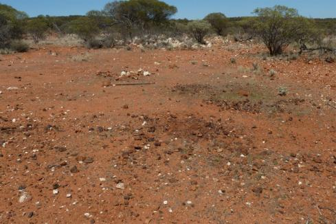 Promising new nickel targets for St George in WA