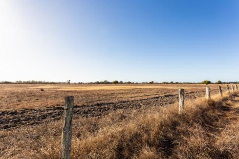 WA crop area to be lowest in years