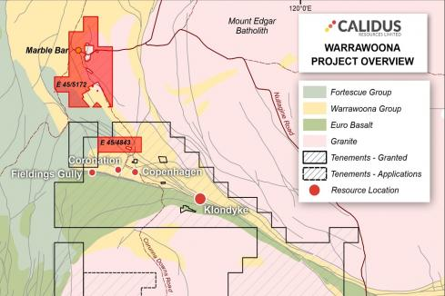 Calidus snaps up two tenements near WA gold project
