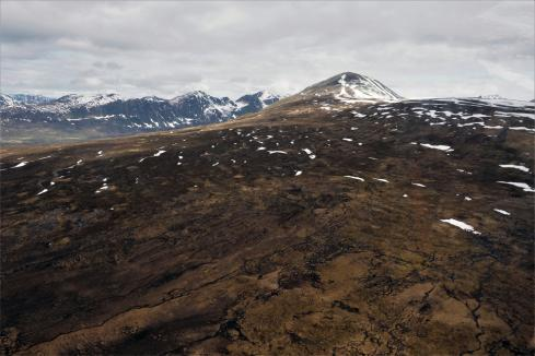 Alaskan porphyry copper target checks out for PolarX