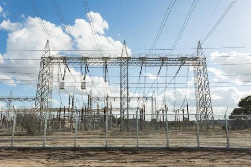 Synergy wins $30m govt contract