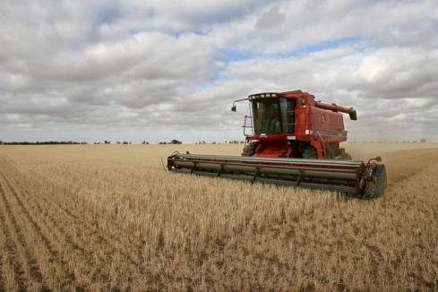 WA farm businesses remain strong