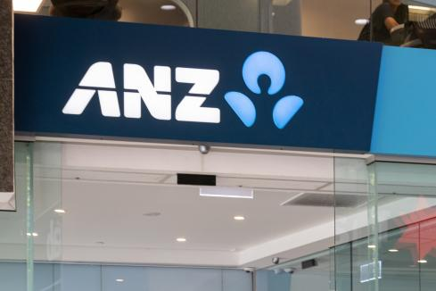 ANZ defers payout as H1 profit plunges