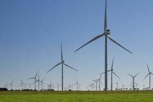 Renewables await policy clarity
