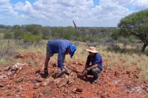 TNG teams with vanadium peer to develop W A project