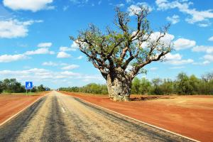 Main Roads committed to indigenous impacts