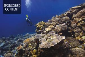 Harnessing the power of our oceans