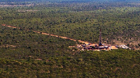 Oil set to stay low: IEA