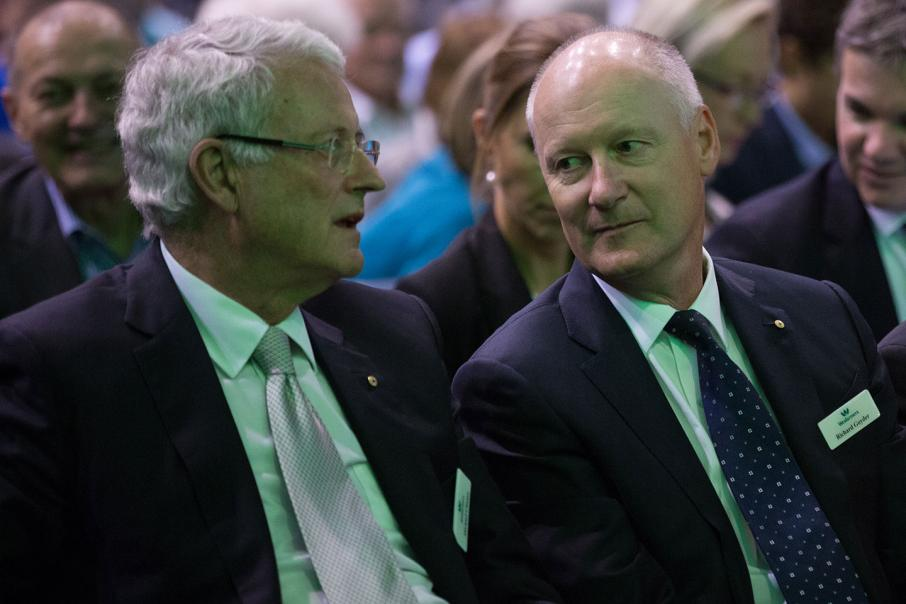 Goyder to chair Woodside