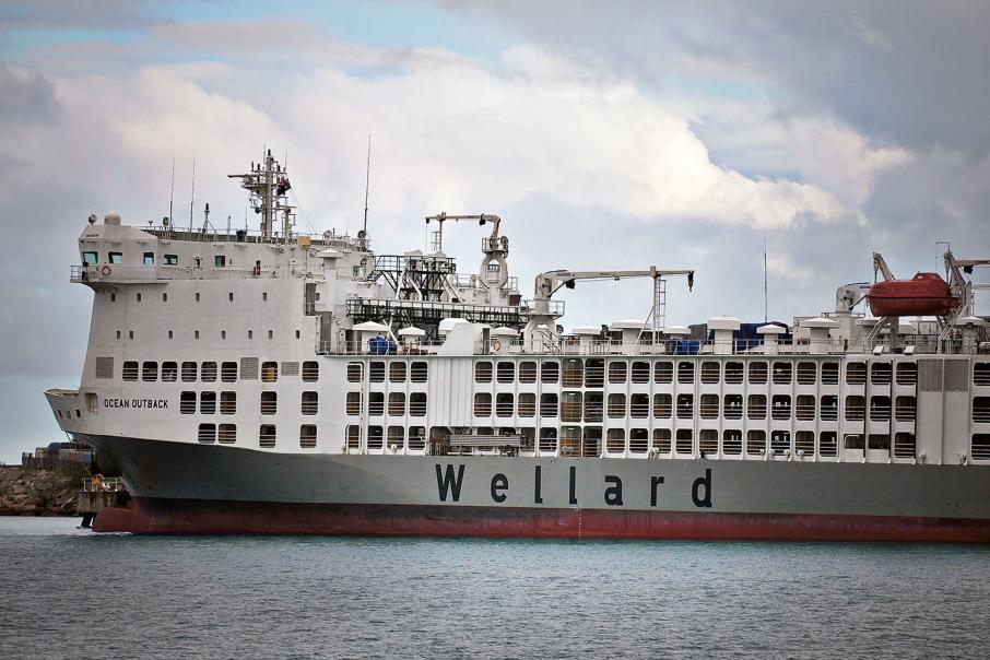 Wellard sells livestock ship to Israeli firm