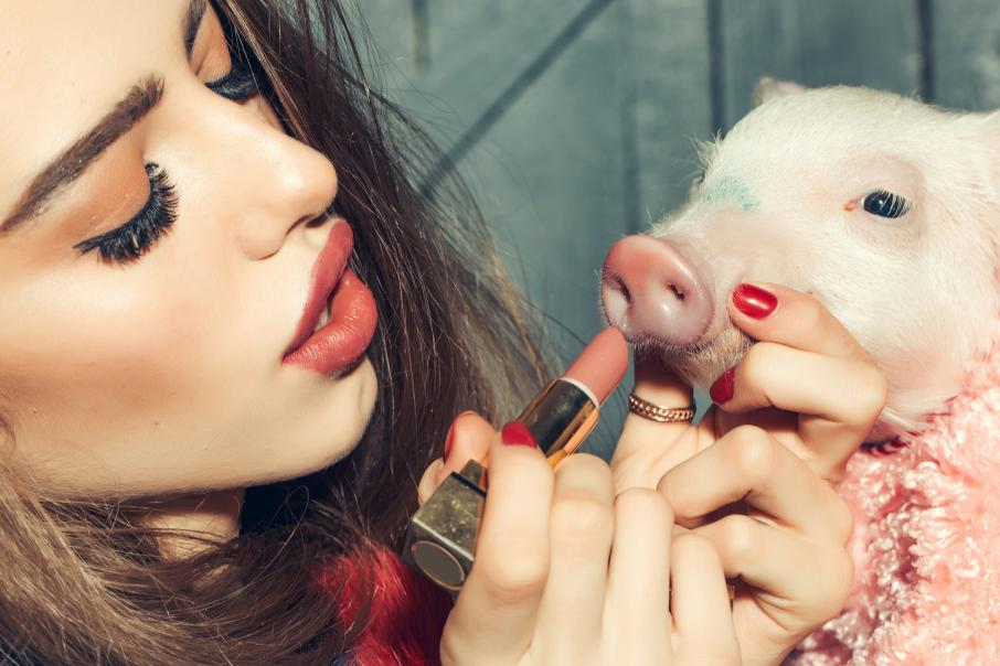 Putting lipstick on a pig is not the answer to growth and innovation