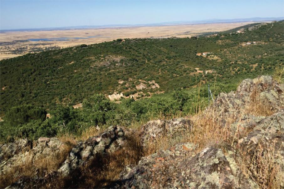 Infinity's Spanish lithium project suitable for hydroxide