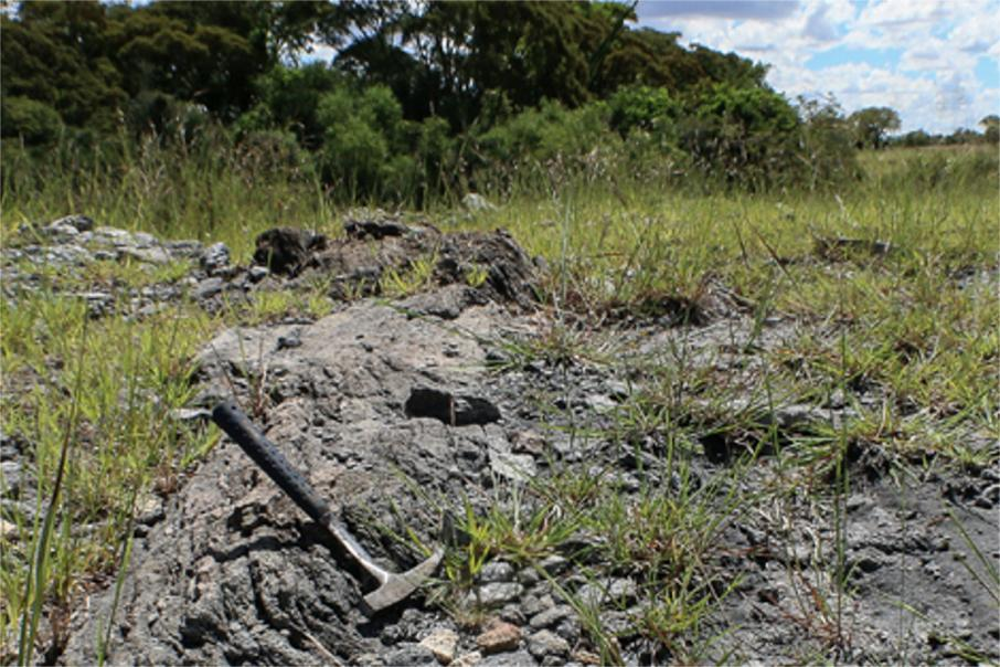 BlackEarth kicks off regional graphite hunt in Africa