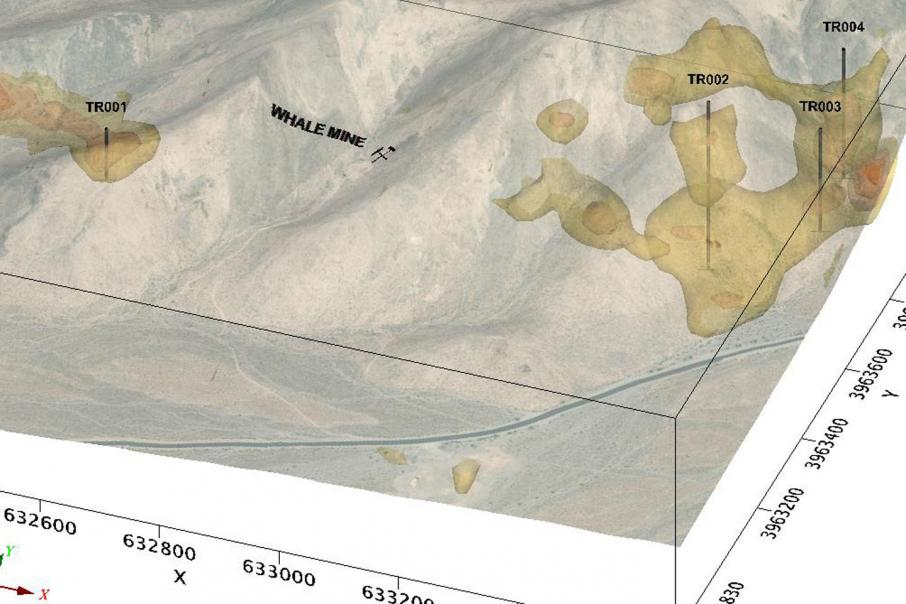 Tyranna maps out cobalt/base metal targets in Nevada
