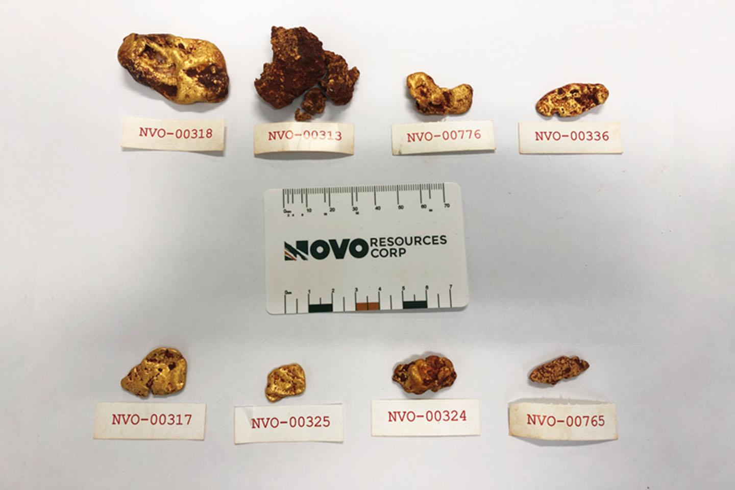 Novo plucks 162 nuggets from trench
